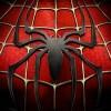 spider023