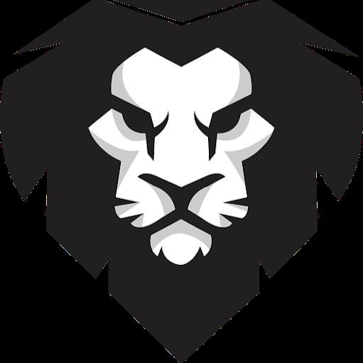 Lion Programer