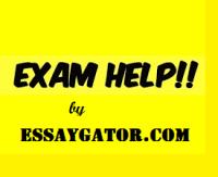 online Exam Assistance