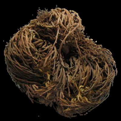 tumbleweed_small.png