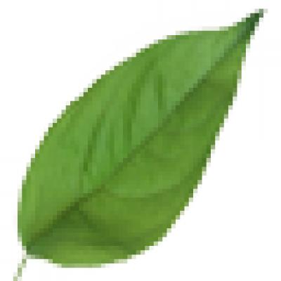 水墨风百鬼夜袭游戏资源-叶子(foliage)_爱给网_aigei_com.png
