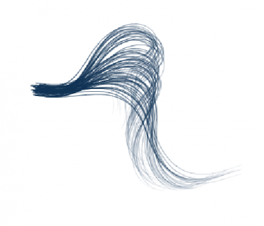 tail with wind and gravity