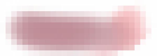 花瓣-贴图_0014_图层-10.png