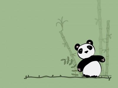 cute-panda-bear-winter.jpg
